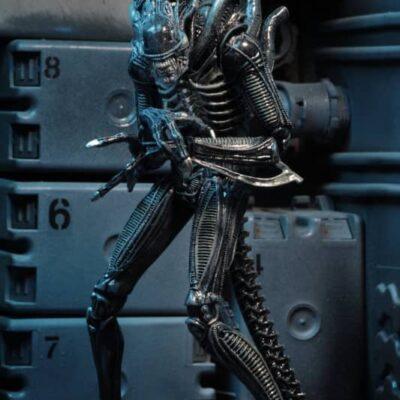 Alien Ultimate Warrior Blue