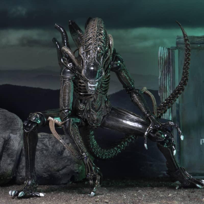 Alien Ultimate Warrior Brown
