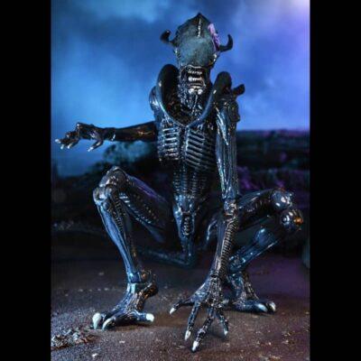Alien vs Predator Arachnoid